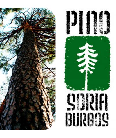 Gestion forestal sostenible