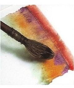 Pinceles de Acuarela Tempera y Tinta