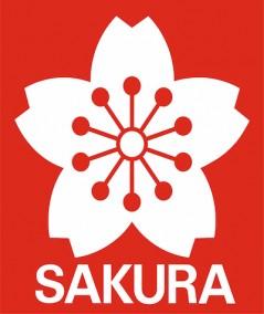 Cajas de Rotuladores Sakura