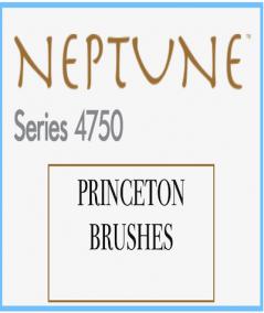 Neptune (ardilla sintética)