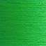 Verde permanente medio